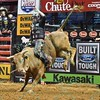 Rider L.J. JENKINS has a successful ride on bull MR. U during the final round at the Professional Bull Riders Built Ford Tough Series, Bass Pro Chute Out presented by Cooper Tires at the Scottrade Center in St. Louis, Missouri