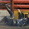 Rider DOUGLAS DUNCAN  falls hard from bull HOU'S BACK during the third round at the Professional Bull Riders Built Ford Tough Series, Bass Pro Chute Out presented by Cooper Tires at the Scottrade Center in St. Louis, Missouri