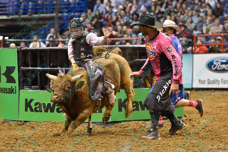 Junior bull rider BLAIZE BROWN during the second round at the Professional Bull Riders Built Ford Tough Series presented by Cooper Tires at the Scottrade Center in St. Louis, Missouri