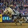 Rider MIKE LEE falls off of bull JOHNNY WALKER BLACK JR. during the first round at the Professional Bull Riders Built Ford Tough Series, Bass Pro Chute Out presented by Cooper Tires at the Scottrade Center in St. Louis, Missouri