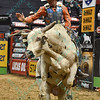Rider DAVE MASON on bull RIM SHOT during the first round at the Professional Bull Riders Built Ford Tough Series, Chute Out presented by Cooper Tires at the Scottrade Center in St. Louis, Missouri
