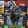 Bull SPITBALL jumps in the air trying to buck Rider CHASE OUTLAW  during the final round at the Professional Bull Riders Built Ford Tough Series, Bass Pro Chute Out presented by Cooper Tires at the Scottrade Center in St. Louis, Missouri