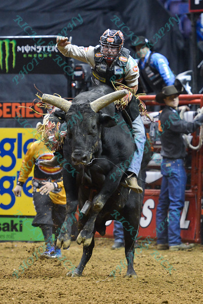 Rider CHASE OUTLAW  with bull DAVID'S DREAM during the third round at the Professional Bull Riders Built Ford Tough Series, Bass Pro Chute Out presented by Cooper Tires at the Scottrade Center in St. Louis, Missouri