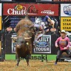 Rider RENATO NUNES  jump off bull MISSOURI BOAT RIDE after completing the ride during the second round at the Professional Bull Riders Built Ford Tough Series, Bass Pro Chute Out presented by Cooper Tires at the Scottrade Center in St. Louis, Missouri