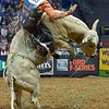 Rider DAVE MASON tries to hold on as bull RIM SHOT stands up during the first round at the Professional Bull Riders Built Ford Tough Series, Bass Pro Chute Out presented by Cooper Tires at the Scottrade Center in St. Louis, Missouri