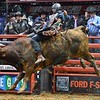 Rider BRADY SIMS  with bull LITTLE JOE during the third round at the Professional Bull Riders Built Ford Tough Series, Bass Pro Chute Out presented by Cooper Tires at the Scottrade Center in St. Louis, Missouri