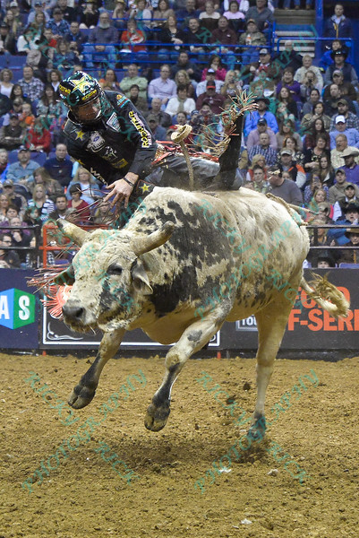 Rider SEAN WILLINGHAM gets bucked from bull SUNDANCE during the second round at the Professional Bull Riders Built Ford Tough Series, Bass Pro Chute Out presented by Cooper Tires at the Scottrade Center in St. Louis, Missouri