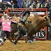 Rider EDUARDO APARECIDO  just jumps out of the way of bull MCINTYRE TRANSPORTS BACK JACKIN during the second round at the Professional Bull Riders Built Ford Tough Series presented by Cooper Tires at the Scottrade Center in St. Louis, Missouri