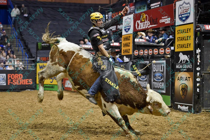 Rider SILVANO ALVES  completes a successful ride on bull XD SPORTS DOUBLE AGENT during the first round at the Professional Bull Riders Built Ford Tough Series, Chute Out presented by Cooper Tires at the Scottrade Center in St. Louis, Missouri