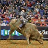 Rider JOAO RICARDO VIEIRA on bull TAHONTA'S MAGIC during the second round at the Professional Bull Riders Built Ford Tough Series, Bass Pro Chute Out presented by Cooper Tires at the Scottrade Center in St. Louis, Missouri