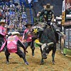 Bullfighter FRANK NEWSOM (orange) tries to get the attention of bull JARED ALLEN'S H4WW THUMBS UP so Rider FABIANO VIEIRA can dismount during the second round at the Professional Bull Riders Built Ford Tough Series, Bass Pro Chute Out presented by Cooper Tires at the Scottrade Center in St. Louis, Missouri