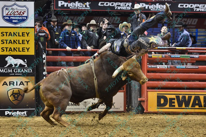 Rider FABIANO VIEIRA on bull JOE TEH GRINDER during the third round at the Professional Bull Riders Built Ford Tough Series, Bass Pro Chute Out presented by Cooper Tires at the Scottrade Center in St. Louis, Missouri