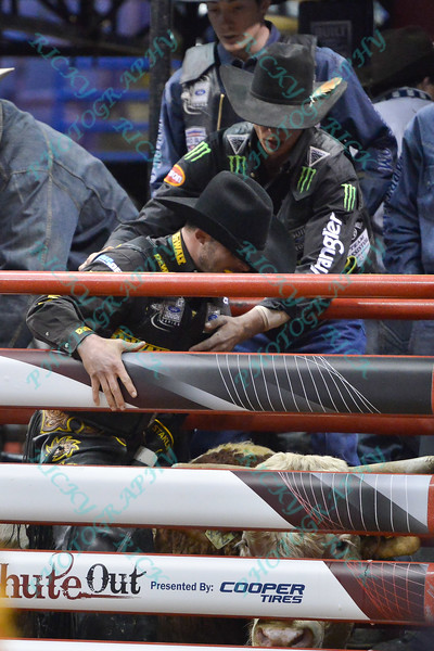 Rider DOUGLAS DUNCAN during the third round at the Professional Bull Riders Built Ford Tough Series, Bass Pro Chute Out presented by Cooper Tires at the Scottrade Center in St. Louis, Missouri