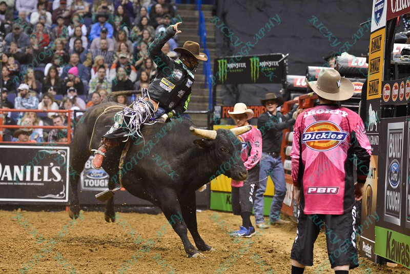 Rider CODY NANCE  completes a successful ride on Bull RAVEN FLYER during the second round at the Professional Bull Riders Built Ford Tough Series, Bass Pro Chute Out presented by Cooper Tires at the Scottrade Center in St. Louis, Missouri