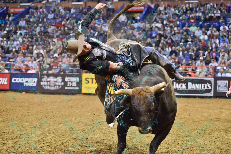 Rider GUILHERME MARCHI starts to fall off of bull LANE'S MAGIC TRAIN during the second round at the Professional Bull Riders Built Ford Tough Series presented by Cooper Tires at the Scottrade Center in St. Louis, Missouri