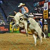 Bull RIM SHOT leaps in the air trying to buck Rider DAVE MASON during the first round at the Professional Bull Riders Built Ford Tough Series, Chute Out presented by Cooper Tires at the Scottrade Center in St. Louis, Missouri