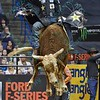 Bull KRAKEN jumps high in the air in an attempt to buck Rider JOAO RICARDO VIEIRA during the first round at the Professional Bull Riders Built Ford Tough Series, Chute Out presented by Cooper Tires at the Scottrade Center in St. Louis, Missouri