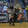 Rider SEAN WILLINGHAM starts to fall off bull OPEN SEASON during the first round at the Professional Bull Riders Built Ford Tough Series, Chute Out presented by Cooper Tires at the Scottrade Center in St. Louis, Missouri