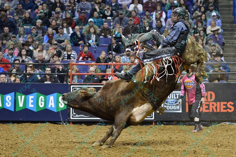 Rider TANER BYRNE gets bucked from bull COOPER TIRES BROWN SUGAR during the second round at the Professional Bull Riders Built Ford Tough Series, Bass Pro Chute Out presented by Cooper Tires at the Scottrade Center in St. Louis, Missouri