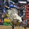 Rider ROBSON ARAGAO starts to slide off of bull HD during the first round at the Professional Bull Riders Built Ford Tough Series, Chute Out presented by Cooper Tires at the Scottrade Center in St. Louis, Missouri