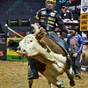 Rider SILVANO ALVES  has a successful ride on bull XD SPORTS DOUBLE AGENT during the first round at the Professional Bull Riders Built Ford Tough Series, Bass Pro Chute Out presented by Cooper Tires at the Scottrade Center in St. Louis, Missouri
