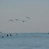 beach 9 08 -2 008