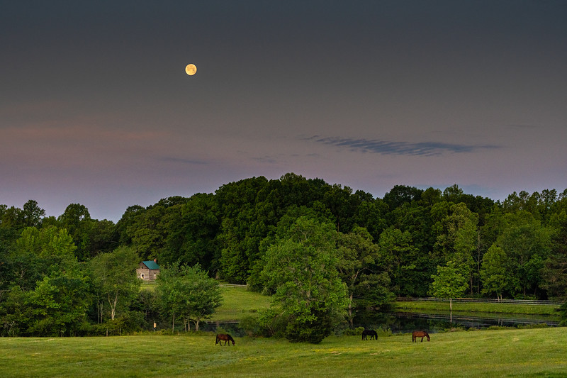 """Scenic #1:  Spur of the moment shot from my backyard as the moon had risen early in the day.  As per your video, I used exposure composition to """"protect the highlights"""" of the moon.  The horse and fields are a little too soft for my taste and thinking about substituting a fountain shot below."""