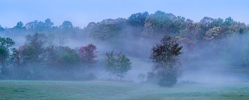 Fog # 1