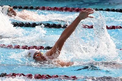 Swim18419B337