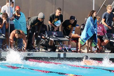 Swim18420B169Ros