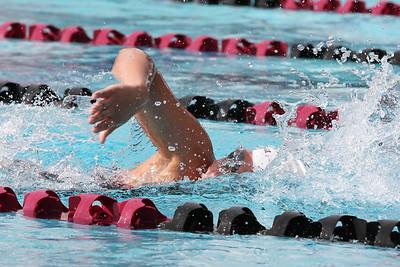 Swim1422feb_3207