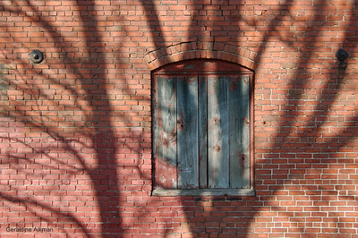 geraldine_aikman_portland_co_shadows