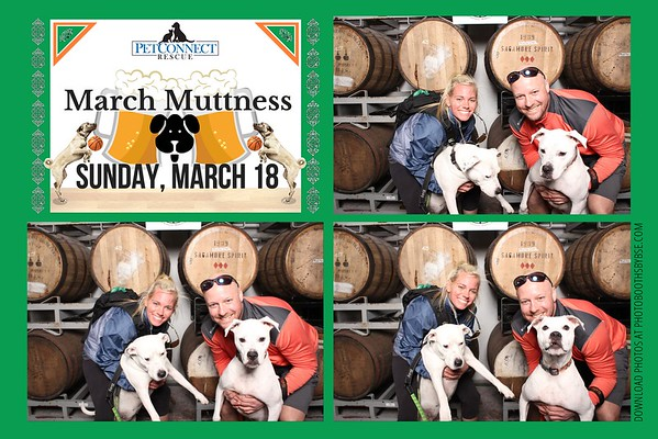 Pet Connect Rescue March Muttness Photo Booth