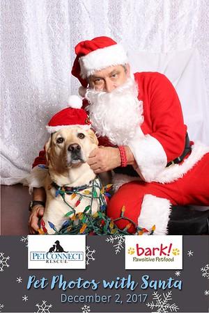 Pet Connect Rescue Pet Photos With Santa