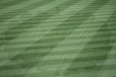 Shea Stadium field.