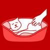 cat sleeping basket petting red