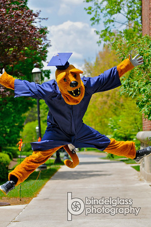 Penn State Nittany Lion & Penn State Nittany Lion - BindelglassPhoto