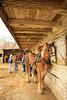PA GREENCASTLE Charlie Lindsay SIX HORSE BELL TEAM MAYJJ_MG_1869MMW