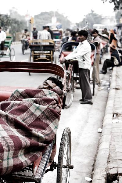 Grabbing forty winks - Old Delhi, India