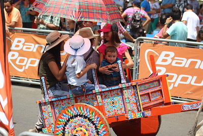 People Riding in Oxcarts