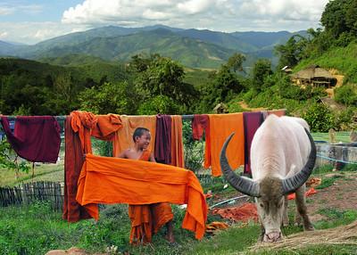 BUDDHIST MONK - SHAN STATE