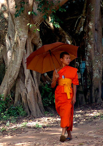 MONK - SHAN STATE