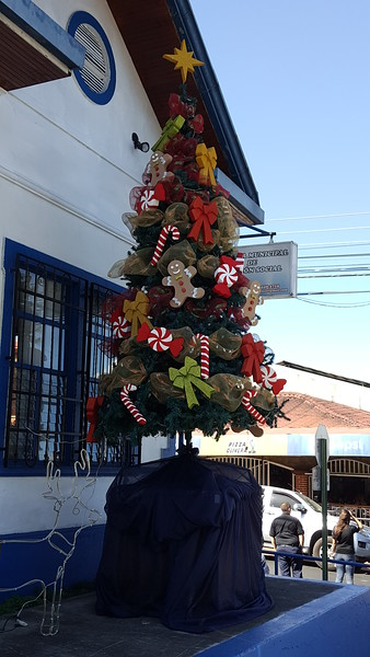 Decorations in Town