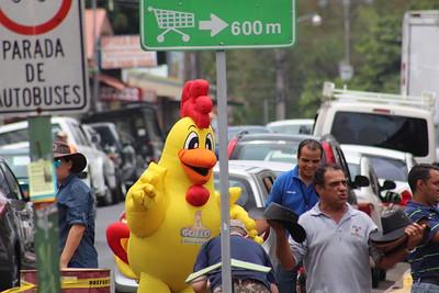 Gollo's Chicken During Climate Fair