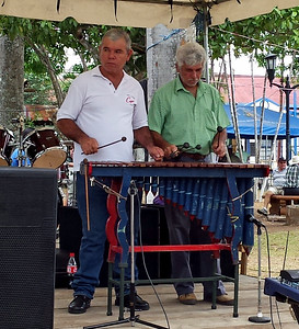 Marimba at Central Park Fiesta