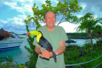 Keel-billed Toucan on Charlie