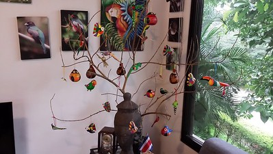 The first tree was shorter, birds more visible, but in your face on the couch!