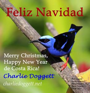 2019 Electronic Christmas Card
