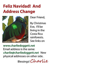 2014 Christmas Card printed and mailed as a post card - Side 1 (address side)
