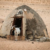 Himba Hut and Goat